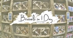 Joey's 28 Days in Europe | Brussels in 1 Day