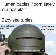 Crazy Funny Memes, Really Funny Memes, Funny Animal Memes, Stupid Memes, Funny Relatable Memes, Haha Funny, Funny Jokes, Hilarious, Funny Stuff