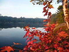 Fall on Carlyle Lake Killarny Provincial Park #Canada #Autumn #Park