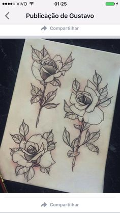 Tattoo Flower Idea's Flower Tattoo Designs, Flower Tattoos, Flower Designs, Neo Traditional Roses, Neo Traditional Tattoo, Tattoo Sketches, Tattoo Drawings, Tattoo Ink, New Tattoos