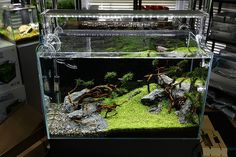 ADA Aquasky 601 LED light by viktorlantos, via Flickr