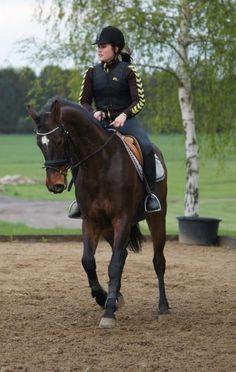 Training wiht cavanna Horsenæs