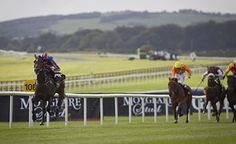 Aidan O'Brien's Order Of St George wins Savel Beg Stakes (listed) at Leopardstown. 03.06.2016
