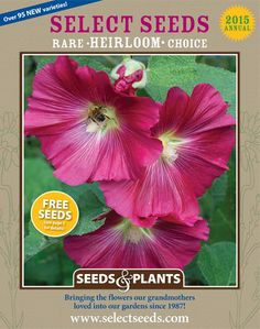 Select Seeds--Antique Flowers offers unique flower seeds of old-fashioned variet. - Select Seeds--Antique Flowers offers unique flower seeds of old-fashioned variet. Garden Catalogs, Plant Catalogs, Seed Catalogs, Cottage Garden Plants, Garden Seeds, Cottage Gardens, Seed Packaging, Packaging Ideas, Flower Company