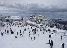 Visit Shimla by http://www.toshalivalyou.com/toshali-royal-view.html
