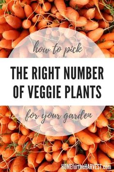 To plan a garden you'll love, it's important to choose the right number of plants to grow so you'll have an abundant harvest without feeling overwhelmed. There are a few factors to consider when planning out your numbers, including how much you'd like to harvest and how much room you have to grow your plants in. Fortunately, there are some very helpful resources to get it all figured out! Fall Vegetables, Planting Vegetables, Organic Vegetables, Growing Vegetables, Veggies, Vegetable Planting Guide, Home Vegetable Garden, Fruit Garden, Veggie Gardens