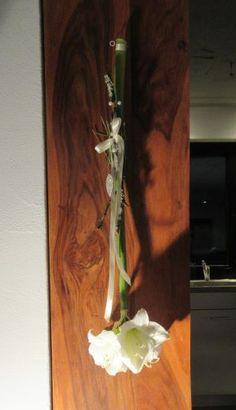 Amaryllis im Schnitt, hängend verarbeitet, da reicht das Wasser im Stiel...anleitung auf  www.marion-like.com  DIY