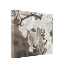 @@@Karri Best price          Elegant Orchid (Sepia Style) Canvas Prints           Elegant Orchid (Sepia Style) Canvas Prints This site is will advise you where to buyReview          Elegant Orchid (Sepia Style) Canvas Prints Here a great deal...Cleck link More >>> http://www.zazzle.com/elegant_orchid_sepia_style_canvas_prints-192159494087608429?rf=238627982471231924&zbar=1&tc=terrest