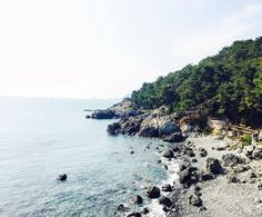 View from the Haeundae beach trail in Busan.  #busan #southkorea #studyabroad #blogger #travel #adventure #traveblog #traveling #expat #workabroad #liveabroad #backpacking #traveling #wanderlust #travelgoals #nomad #instagood #instatravel #travelgram #studentnomad  #travelhere #traveler #huffpostgram #vscocam #iphoneonly #korea #asia #ocean by allisongoneabroad