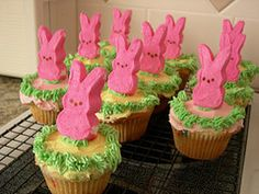 Funny bunny cupcakes!