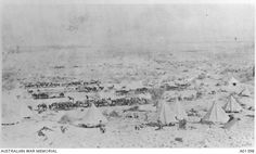 View of the Australian Light Horse Brigade camp and horse lines at Jericho. War Horses, Ottoman Empire, World War I, Wwi, Armed Forces, Middle East, Soldiers, Campaign, Palestine