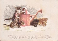 Victorian New Year Card CATS WATERING CAN & SNOW. Helena Maguire.