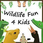 Wildlife Fun 4 Kids