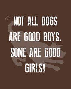 Impawtant PSA: Not all dogs are good boys. Some are good girls! 🤣 WeeklyPLAYQuote #dogquotes #dogmoments #dogsarethebest #dogloversfeed #dogslife #dailydogs #wedontdeservedogs #dogsarebetterthanhumans #dogsareloves #dogsarethebest #dogsmakeeverythingbetter #dogmeme #introvert #caninetrovert #dogsayings #dogjokes #dogmomaf #mood Cute Cat Quotes, Dog Quotes Funny, Funny Dogs, Play Quotes, Dog Jokes, Animal Quotes, Introvert, Dog Mom, Best Dogs