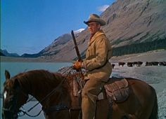 """Jimmy and his horse, Pie, from a scene in The Far Country, 1954.  """"The horse was amazing.  I rode him for 22 years...I saw him when I started making Westerns.  Audie Murphy rode him a couple of times.  He nearly killed Glen Ford, ran right into a tree...but I liked this darned little horse."""" (BFI Interview, 1972)"""