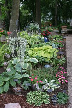 Front hosta bed - color in the shade Turtle Rock, Planting Plan, Spaces, Landscape, Bed, Flowers, Plants, Color, Gardens