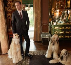 British actor Tom Hiddleston is the newest face of Gucci's Cruise 2017 tailoring ad campaign. The campaign was shot at American artist Tony Duquette's Dawn