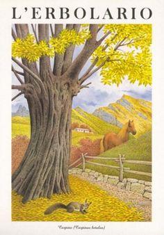 Calendario L'Erbolario - Acquerelli di Franco Testa   #TuscanyAgriturismoGiratola
