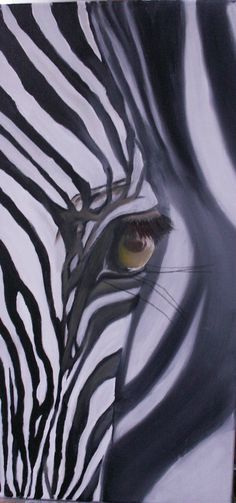 le zebre Plus