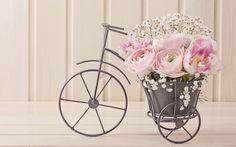 ранункулюсы, тюльпаны, букет, композиция, велосипед