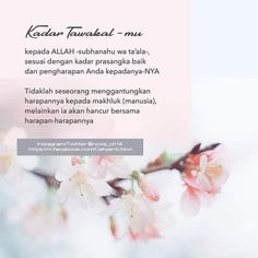 New Reminder, Reminder Quotes, Words Quotes, Qoutes, Muslim Quotes, Islamic Quotes, Learn Islam, Quotes Indonesia, Flower Quotes