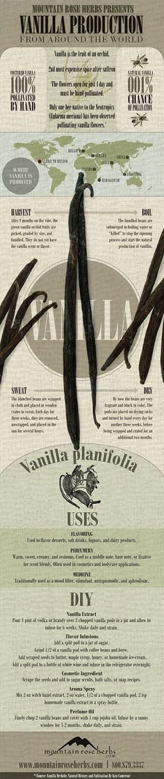 All About Vanilla ~ infographic with recipes!