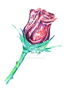 Rose by Adisida on DeviantArt Light In The Dark, My Drawings, Blue And White, Deviantart, Purple, Rose, Green, Pink, Roses