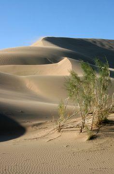 Dunes - Almaty