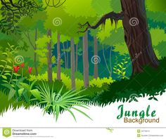 Jungle Trees Clip Art | ... view of typical Amazon rain forest Jungle Trees And Wilderness