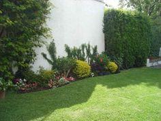 cuidados-para-el-jardin