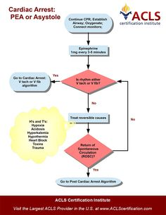Adult Cardiac Arrest Algorithm : PEA or Asystole algorithm by the ACLS Certification Institute. View all acls algorithms at http://www.aclscertification.com/free-learning-center/acls-algorithms/