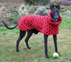 Double fleece polo neck greyhound coat by ThePatternedHound, £18.00