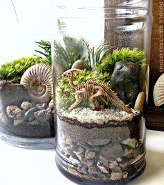Miniature dinosaur fossils inside a terrarium display jar.