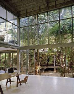 Open glass rooms looking out to nature. I would work in this office all day if this was what I had around me.