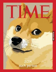 Doge FTW! such talent, much influence, simply amaze