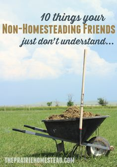 Have you ever noticed kind of a gap? Sometimes it feels like there's a bit of a disconnect between me and my non-homesteading friends. Ever been there? Thankfully, considering I've been chasing this homesteading dream for about 7 years now, most of my friends/family now understand that Jill is just weird. And they're used to …