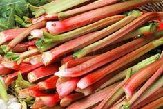 8 wonderful Rhubarb recipes