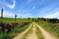 Camino Primitivo