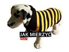 ubranka dla psa, sweterek dla psa, karpzoo.pl