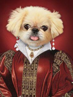 7df23312fb7a Custom Pet Portrait,Renaissance Pet portraits,Regal pet portrait,Royal Pet  Portrait,Unique gifts,Funny gifts,Dog art,pet painting,cat,dog