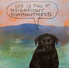 Life is full of insignificance disappointments.
