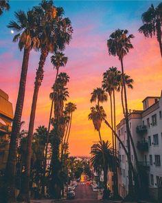 Venice California by michaelste