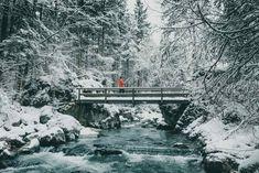 Der Zauberwald in den Berchtesgaden Fotospots Bavaria Germany, Lights, Instagram, Nature, Outdoor, Pictures, Winter Vacations, Photo Mural, Winter Scenery