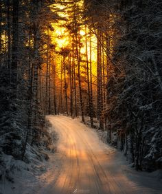 Winter Light by Lauri Lohi - Photo 182259809 / 500px