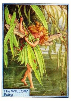 Willow Fairy Print or any of the original vintage Cicely Mary Barker