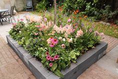 Border vol bloemen - Eigen Huis & Tuin