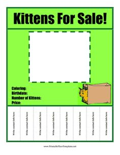 puppy for sale flyer