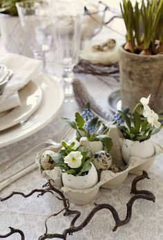 Une décoration de Pâques facile à réaliser. Une boîte d'oeufs coupée en deux, des coquilles d'oeufs garnies de petites plantes et quelques oeufs de cailles.