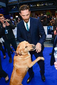 Tom Hardy at Legend premiere with pregnant wife Charlotte Riley and dog Woody in London Lainey Gossip Entertainment Update