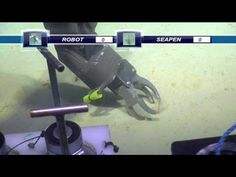 ROBOT VS. SEAPEN | Deep Sea News